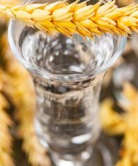 Korn unterschied klarer und unterschied korn