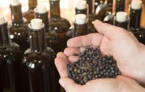 Fieldfare handcrafted Gin Bild
